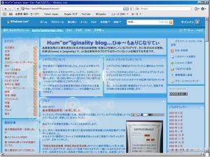 [H21.6.10] Safari 4 文字化けが直ったブログスクリーンショット