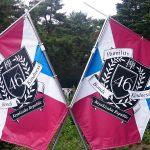欅坂46「欅共和国」一日目に参加しました