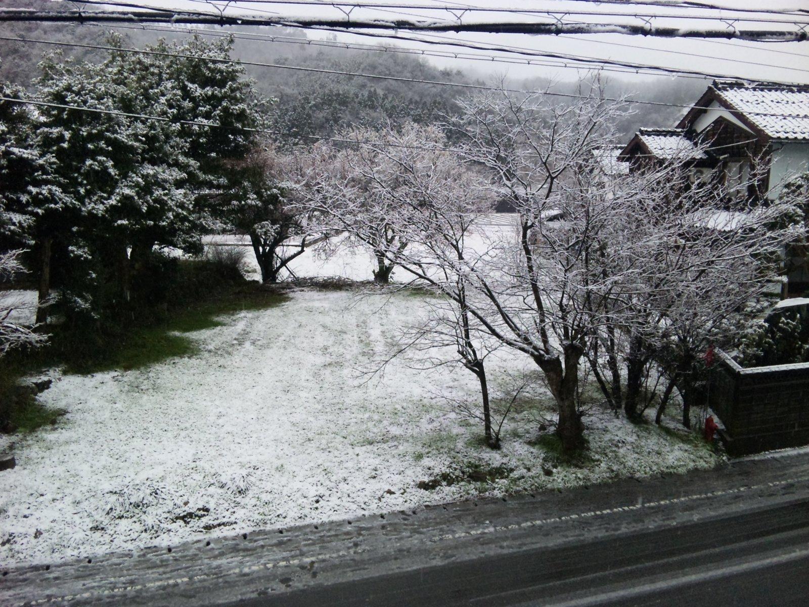 [H22.3.10]雪が降ったり晴れたり